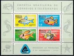 1935: Brasilien - Blöcke