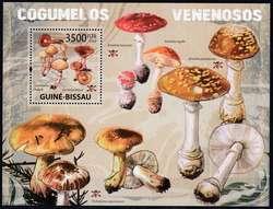 2945: Guinea Bissau