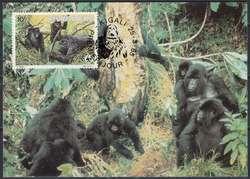 5395: Ruanda - Maximumkarten