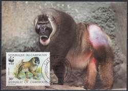 3850: Kamerun - Maximumkarten