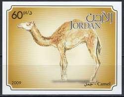 3765: Jordanien - Blöcke