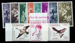 6000: Spanisch Sahara
